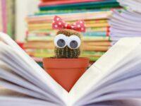 Twaalf nuttige boeken om als leerkracht in bezit te hebben.
