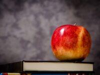 10 dingen die ik had willen weten voordat ik leerkracht werd…