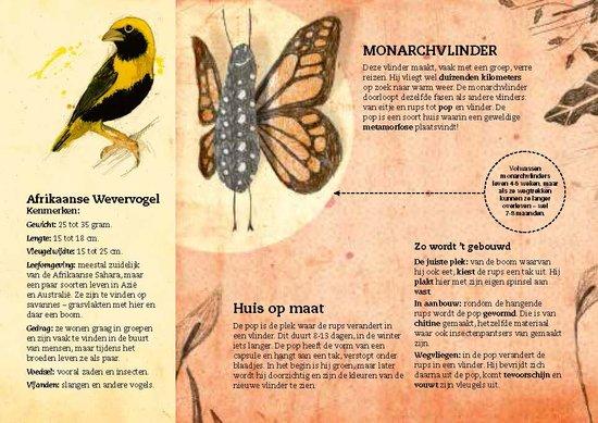 Van bijenflat tot vogelvilla1