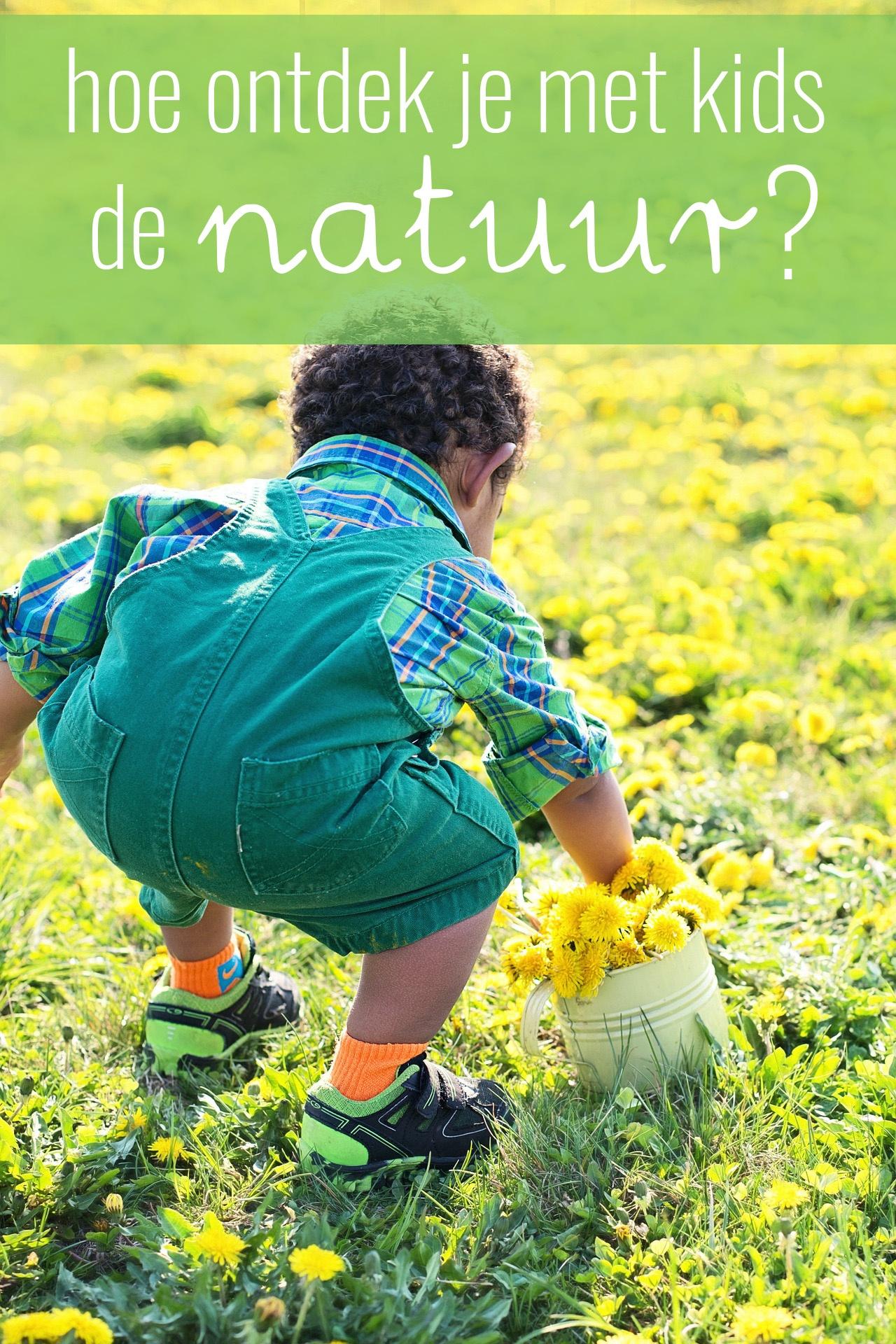 Hoe ontdek je met kinderen de natuur? Door een natuurvriendelijke achtertuin, de buurt samen te verkennen of door schat te zoeken. Lees snel verder!