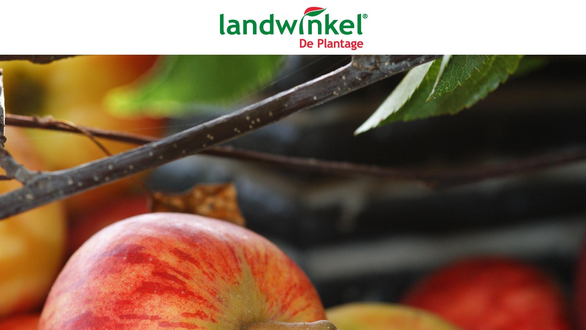 uitje Landwinkel