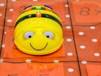 Bee-Bot lessuggesties bij de Transparante mat