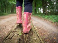 6 leuke activiteiten in het bos