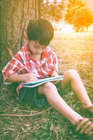 Bundel schrijfopdrachten zomer