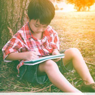 schrijfopdrachten zomer bundel