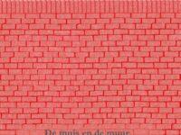 Boekentip: De muis en de muur