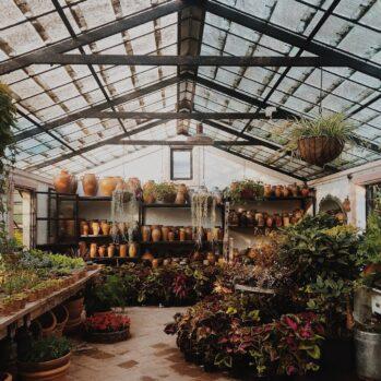Bundel thema tuincentrum